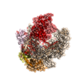 Bacterial RNA-polymerase structure 1HQM.png