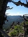 Badger Creek Wilderness.jpg