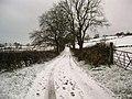 Balcastle Road - geograph.org.uk - 1627006.jpg