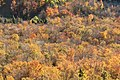 Bald Mountain, Franconia (494068) (11893228833).jpg