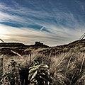 Bambrugh Castle.jpg