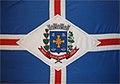 Bandeira de Luiziânia.jpg