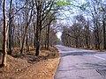 Bandipur Tiger Reserve - panoramio (14).jpg