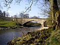Bank of River Wharfe, Kettlewell - geograph.org.uk - 383827.jpg