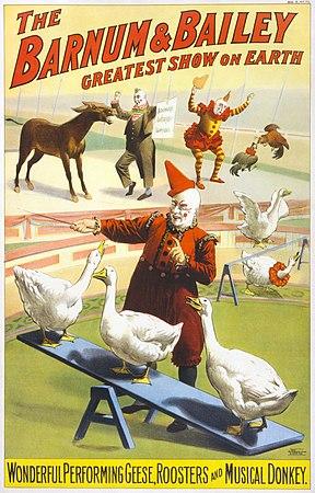 Barnum & Bailey clowns and geese2.jpg