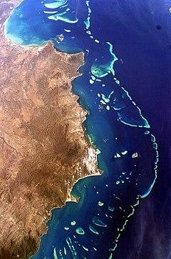 la-grande-barriere-de-corail