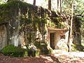 Bartošovice v Orlických horách, R-S 61 (rok 2010; 03).jpg