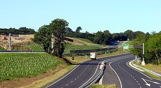 A38 road - Bat Bridge on the A38 Dobwalls Bypass, Cornwall, UK. (2009)