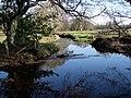 Beaulieu River - geograph.org.uk - 1304798.jpg