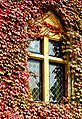 Belgium-5525 - Ancient Guest House Window (13270420583).jpg
