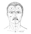 Bertillon - Identification anthropométrique (1893) 358 n&b.png