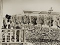 Bhumibol Adulyadej and Sirikit audience 7 May 1950.jpg