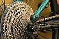 Bike gears shifting gears on a cassette with derailleur.jpg