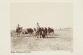 Bild ur Johanna Kempes samling från resan till Algeriet och Tunisien, 1889-1890 - Hallwylska museet - 91798.tif