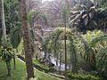 Bird Park in Kuala Lumpur (Malaysia) (47).jpg