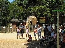 Birds at badoca Safari Park.jpg
