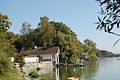 Bodenseeufer in Radolfzell (10278359325).jpg