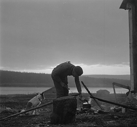 "A Finnish soldier cooking with his dog, Hupi (""Joy""), at Leivejoki, 40 km (25 mi) south of Rovaniemi, in October 1944. Hupi followed its master during three wars--according to the photographer. Bonfire and dog during Lapland War.jpg"