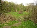 Bonfire site, Netheroyd Hill, Fartown - geograph.org.uk - 160648.jpg