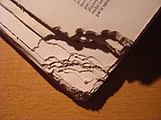 Book nibbled by a rodent - corner.JPG