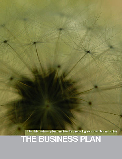 Booklet the business plan.jpg