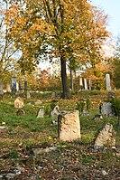 Boskovice-židovský-hřbitov2018d.jpg
