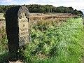 Boundary post , Stone Edge - geograph.org.uk - 250734.jpg