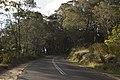 Bowral NSW 2576, Australia - panoramio (127).jpg