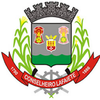 Official seal of Conselheiro Lafaiete