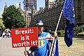 Brexit Demonstrator (42485877015).jpg