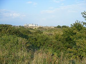 Broadcroft Quarry - Part of the nature reserve with HM Prison Portland, a Young Offenders Institution in the distance.