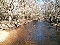Brockenhurst, UK - panoramio (3).jpg