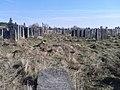 Brody cemetery 04.jpg