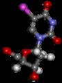 Bromodésoxyuridinte 3D.png