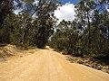 Brooman NSW 2538, Australia - panoramio (138).jpg