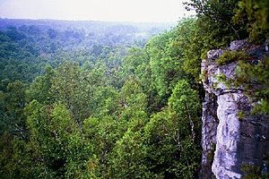 Rattlesnake Point (Canada) - View from the Niagara Escarpment near Rattlesnake Point