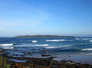 Brush Island Protected area in New South Wales, Australia