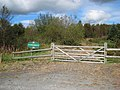 Brynglas Wood - geograph.org.uk - 559246.jpg
