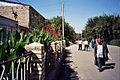Bukhara (483952).jpg