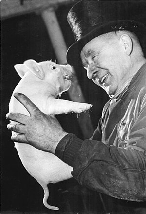 Pigs in popular culture - Pig at a German new year event, 1965.