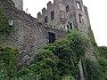 Burg Pyrmont 2013 - panoramio (2).jpg