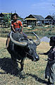 Burma1981-106.jpg
