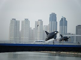 Busan, Korea - panoramio - gary4now.jpg