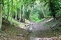 Byway towards Hill Corner - geograph.org.uk - 1344823.jpg