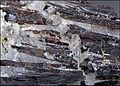CélestineEtHübnérite Pérou RefE158 MuséumHistoireNaturelleLille GLAM2016 Photo.F.Lamiot 6.jpg