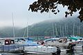 CL Claytor Lake Ness Monster (16911427808).jpg