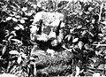 COLLECTIE TROPENMUSEUM Beeld in het bos omgeving Buitenzorg TMnr 60016466.jpg