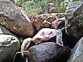 Cachoeira Rio Anil - panoramio (4).jpg