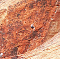 Calico Hills The Gallery 3.jpg