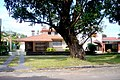 Calle Gral. Artigas - panoramio (3).jpg